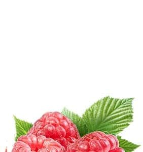 footer_raspberry